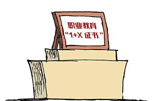 关于扩大1+X证书制度试点规模有关事项的通知